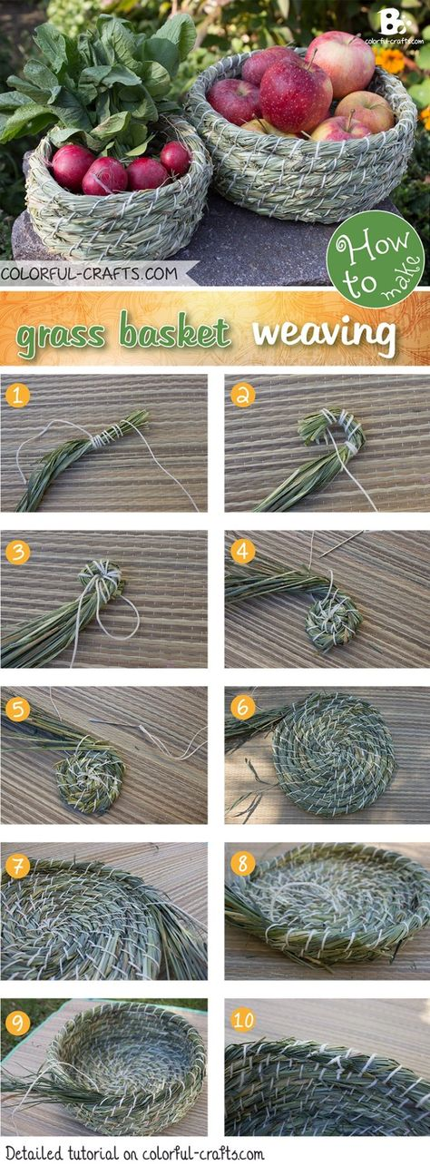 There are many ways to grass basket weaving. This simple technique is just one of many. Learn how to make your own grass basket with a step by step tutorial Weaving Projects, Weaving Art, Paper Basket Weaving, Weaving For Kids, Pine Needle Baskets, Color Crafts, Pine Needles, Nature Crafts, Diys