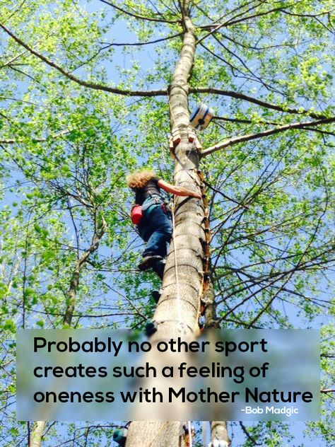 Climbing trees made possible by Monkey Hardware and TRUBLUE Auto Belay! #climbing #TRUBLUE #AutoBelay #ClimbOn #Climbers #ClimbingTrees #HeadRushTechnologies