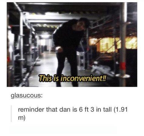 Dan you tall ass fuck