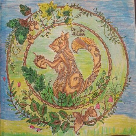 Gizemli Orman Sincap In Boyamasi Ben Yapiyorum Esrarengiz