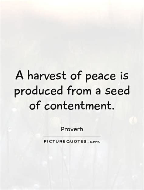 Image Result For Contentment Quotes Contentment Quotes Quotes Word Of The Day