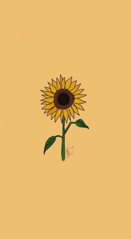 Aesthetic Wallpaper Collage Vans 51 Ideas Wallpaper Sunflower