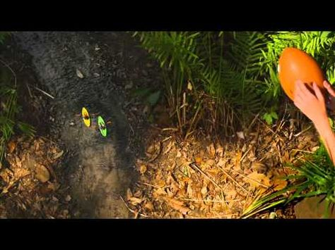 A beautiful Florida-friendly yard requires less water, fertilizer, and pesticide, leaving more time for fun. Learn five easy ways to Floridify your yard at www.befloridian.org. This video was created by Sarasota County.
