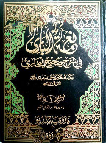 Nemat Al Bari Fi Sharah Al Bukhari Urdu 16 V نعمة الباري في شرح صحيح البخاري Pdf Books Reading Download Books Pdf Books