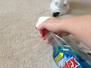 Ironing With A Cleaning Solution And Towel Over A Carpet Stain Will Work But You D Be Better Off Using Normal Cleaners Not Ammonia Solution Carpetcleaning