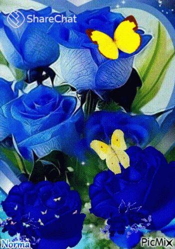 Blue Roses Flowers GIF - BlueRoses Rose Flowers - Discover & Share GIFs
