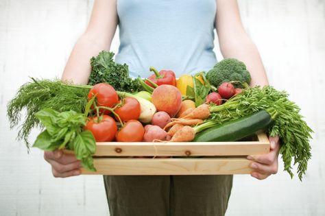 Necesitas un dieta acelera metabolismo ?