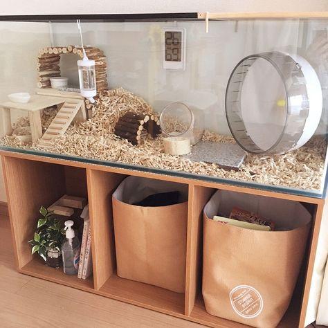 Diy Hamster House, Hamster Tank, Hamster Bin Cage, Cool Hamster Cages, Gerbil Cages, Diy Guinea Pig Cage, Hamster Life, Hamster Habitat, Chinchillas
