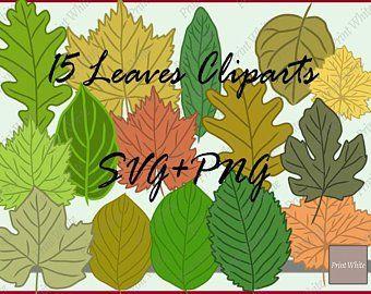 Leaf Svg Fall Leaves Svg Fall Svg Leaves Clipart Maple Leaf Etsy Leaf Clipart Autumn Leaves Clip Art