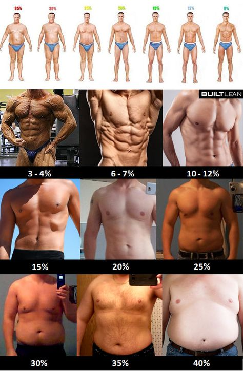 Body Fat Percentage: Check These Pictures of Women & Men - Tribesports
