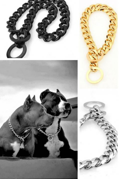 Pitbull Strong Silver Gold Stainless Steel Metal Dog Collar