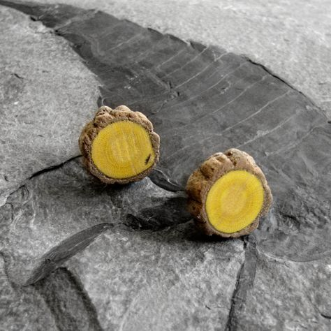 Rustic Myrtle Twig Wooden Cuff Links by Tanja Sova