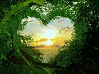 Communing with Nature ~ How to Receive Upgrades and Deep Healing