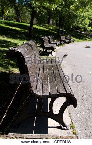 Des Bancs Dans Le Parc La Fontaine A Montreal Quebec Banque D Images Outdoor Outdoor Decor Park Bench