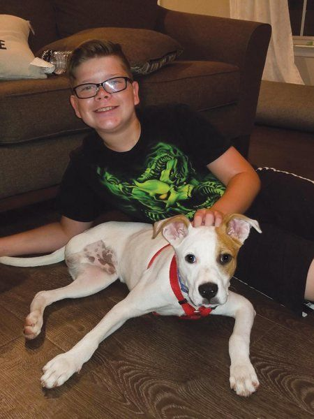 Zero To Hero Bullied Boy Finds New Confidence After Adopting 3