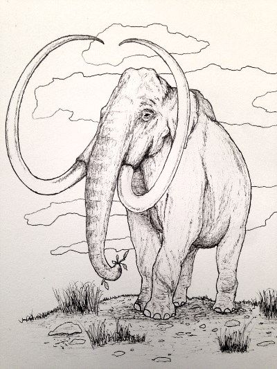 Mammoth Pen Drawing How To Draw Coloring Pages Dinosaur Coloring Pages Animal Coloring Pages Coloring Pages