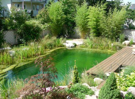 Schwimmteich Fotos, Schwimmteich Bilder, Gartenteich Bilder - naturlicher bachlauf garten