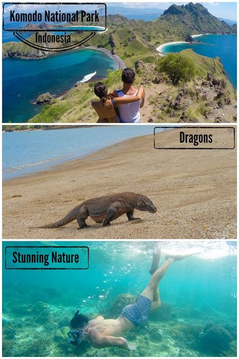 The Best of Komodo Island in Indonesia! All you need to know to plan a trip to Komodo Island. How to get to Komodo National Park, go trekking, see the Komodo dragons and go scuba diving. via @loveandroad: