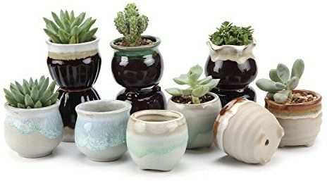 Amazon Com T4u 2 5 Inch Ceramic Flowing Glaze Black White Base Serial Set Succulent Plant Pot Ceramic Succulent Planter Ceramic Succulent Planting Succulents