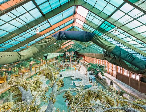 Wild Bear Falls Indoor Water Park -- good enough to return and much less expensive than Dollywood's Splash Country
