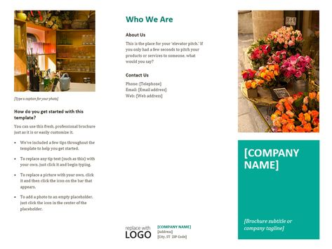 Pamphlet, Brochure, Flyer, Poster, http\/\/wwwmsofficeguruorg - phamplet template