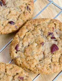 Sugar Free Cookies