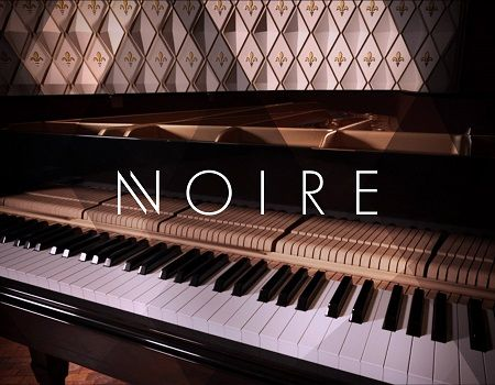 Native Instruments Noire V1 1 Kontakt 14 68 Gb Com Imagens