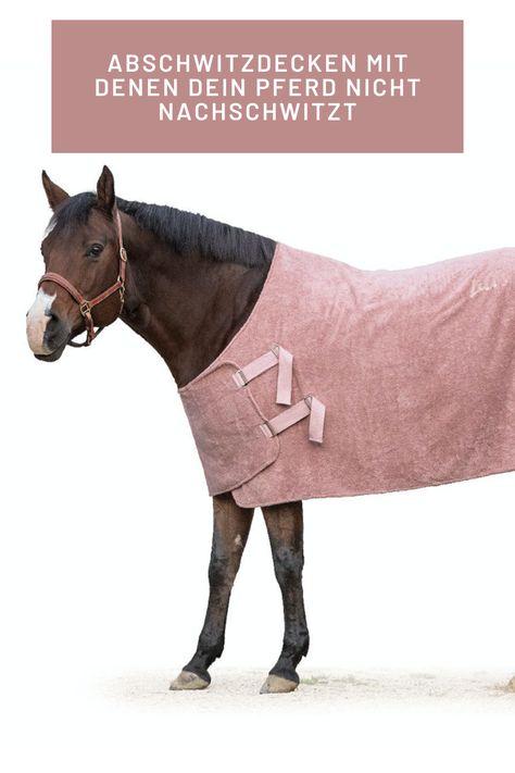 voltigieren ausmalbilder pferde dressur  malvorlage