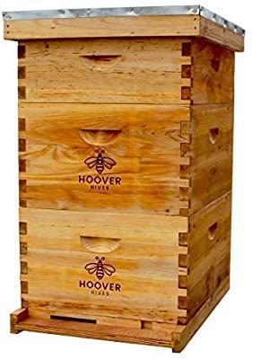 Amazon Com Hoover Hives Natural Bees Wax Coated 10 Frame Bee Hive Includes Frames And Foundations 2 Deep Box 1 Med In 2020 Framed Bee Bee Keeping Supplies Bees Wax