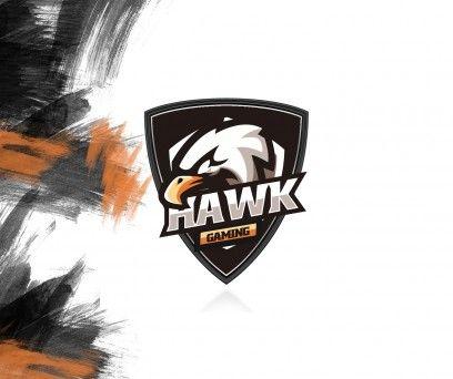 Hawk Clan Logo Logo Clandesigns Design