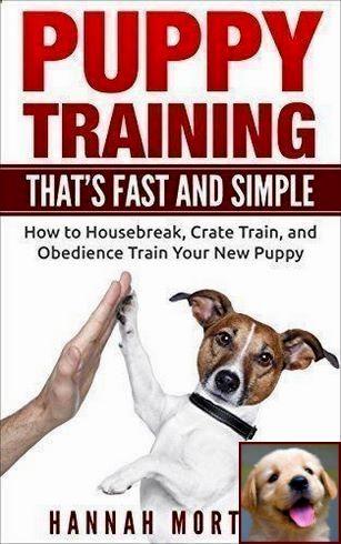 1 Have Dog Behavior Problems Learn About Dog Behavior Rolling On