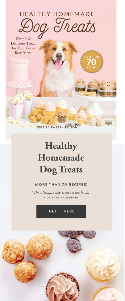Healthy Homemade Dog Treats - Simple  Delicious Treats for Your Furry Best Friend. More than 70 Recipes!