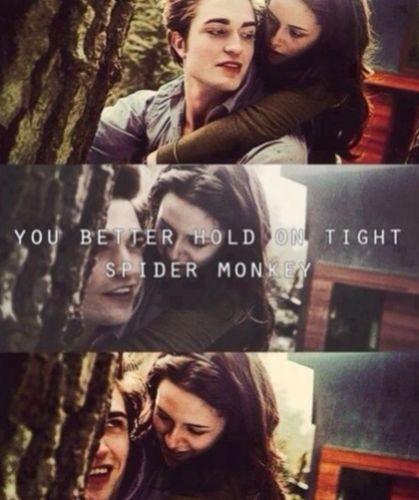 Twilight Movie Photo: Twilight movie