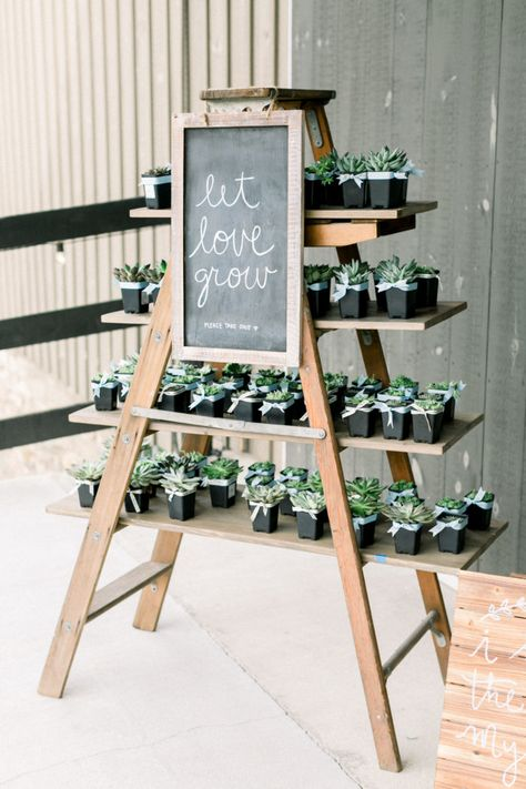 Colorful Rustic Wildflower Wedding - United With Love Brittany Thomas Photography Succulent Wedding Favors Let Love Grow Chalkboard Sign Succulent Wedding Favors, Wedding Favors For Guests, Unique Wedding Favors, Wedding Decorations, Wedding Rustic, Handmade Wedding, Personalized Wedding, Elegant Wedding, Wedding Favor Table