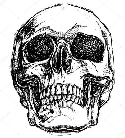 Desenho Para Tatoo Caveiras Skulls Drawing Skull Drawing