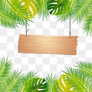 Cartoon Leaves Border Leaf Border Leaf Border Leaves Cartoon Leaves Border Leaf Border Leaves Png And Vector With Transparent Background For Free Download Tropical Frames Cartoon Leaf Tropical Leaves
