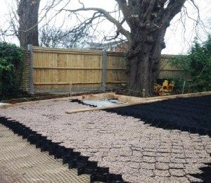 Core Tree Root Protector Tree Root Protection For Roads Driveways Tree Roots Sustainable Landscaping Sustainable Garden