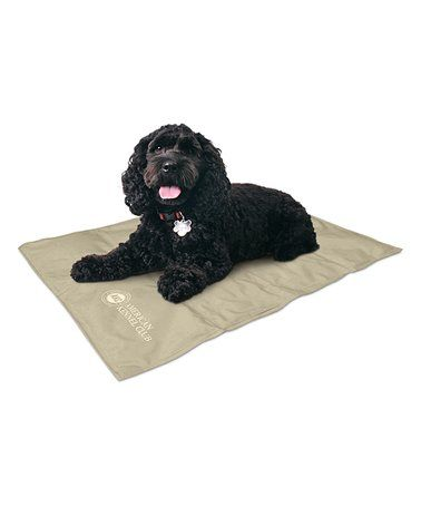 Loving This Tan Pet Cooling Pad On Zulily Zulilyfinds With