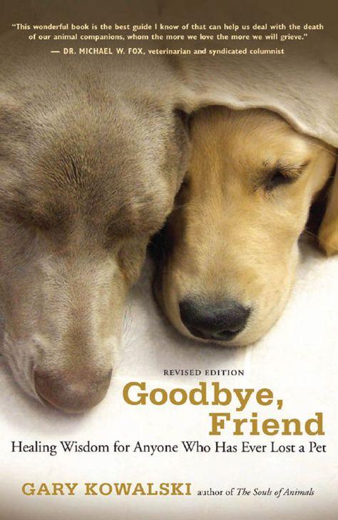 Goodbye  Friend (eBook)