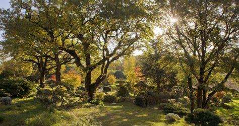 Erik Borja Jardin Zen Jardin D Artiste Jardin Japonais