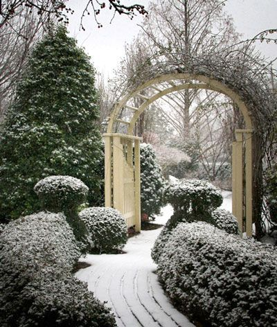 ZsaZsa Bellagio – Like No Other: That time of year.