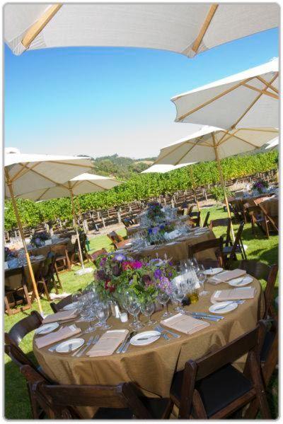 Backyard Weddings And Large Matching Market Umbrellas