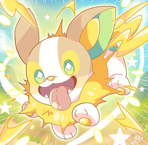 Yamper - PokemonSwordAndShield