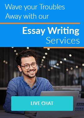 Wave your troubles away with our Essay writing Services