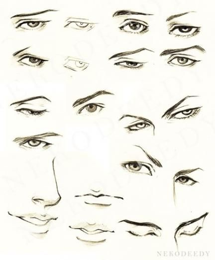 24 Ideas Drawing Eyes Male Sketch Drawing Eye Drawing Tutorials