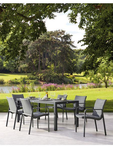 Gartenmobelset Milos Livorno 7 Tlg 6 Sessel Tisch 180x90 Cm Stapelbar Alu Senotex Jetzt Bestellen Unter Htt Coole Zimmerpflanzen Garten Zimmerpflanzen