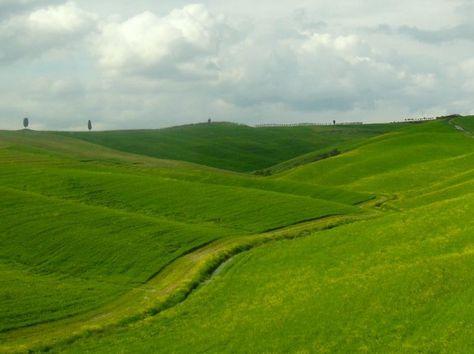 Treno Natura: viaggio slow attraverso i panorami fiabeschi delle Terre di Siena