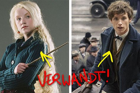 """37 Facts That Will Make You Look At """"Harry Potter"""" With New Eyes"""