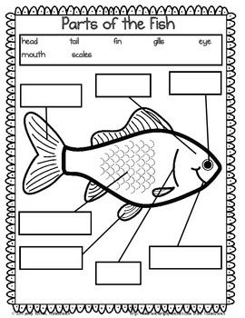 Goldfish And Guppies Unit For Kindergarten Science Kindergarten Science Fish Activities Worksheets For Kids Fish kindergarten worksheets