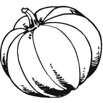 Dibujos De Verduras Y Hortalizas Para Colorear Imagui Dover